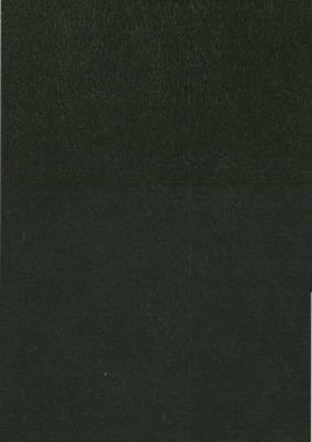 Ouro Preto: Typ. da Actualidade, 1881., 1881