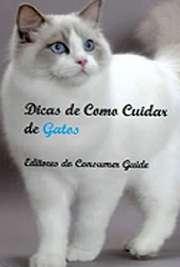 Dicas de Como Cuidar de Gatos