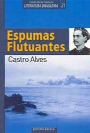 <font size=+0.1 >Espumas Flutuantes</font>