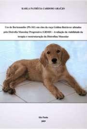 Uso de Bortezomibe (PS-341) em cães da r