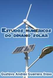 Estudos numéricos do dínamo solar
