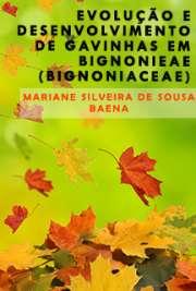 Evolução e desenvolvimento de gavinhas em Bignonieae (Bign ...