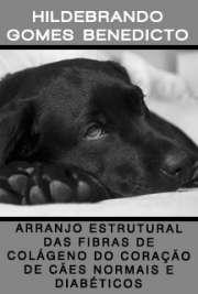 Faculdade de Medicina Veterinária e Zootecnia / Anatomia dos Animais Domésticos e Silvestres Universidade de São Paulo