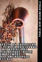 Efeito da exposição à fumaça de cigarro e ao resíduo de óleo diesel (ROFA) em pulmões de camundongos C57/BI6 Faculdade de Medicina / Emergências Clínicas