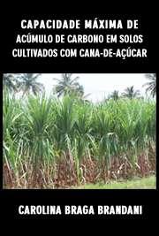 Capacidade máxima de acúmulo de carbono em solos cultivado ...