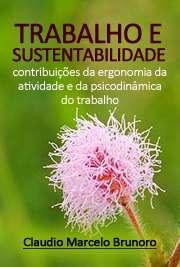 Trabalho e sustentabilidade: contribuições da ergonomia da ...