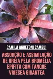 Absorção e assimilação de uréia pela bromélia epífita com  ...
