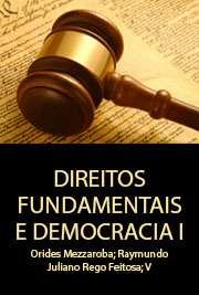 DIREITOS FUNDAMENTAIS E DEMOCRACIA I