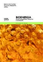 <font size=+0.1 >Bioenergia</font>