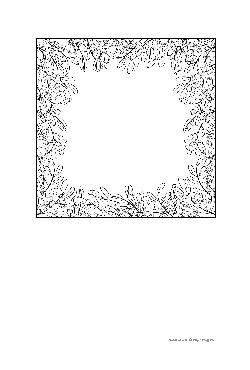 Ilustrações para Colorir (para adultos)